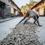 Dried Ginger steered up behind a Spice Warehouse in Fort Kochi, Kerala