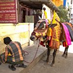 Traditional Textile Trader in Coimbatore streets, Tamil Nadu